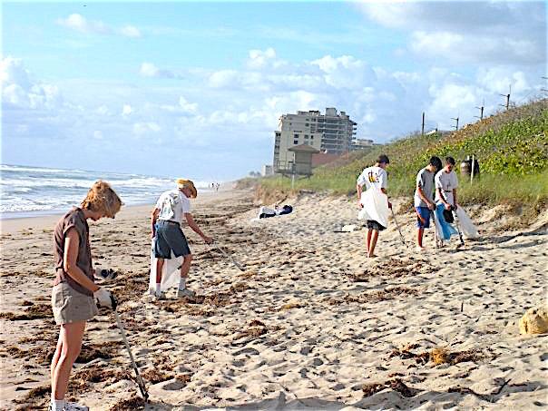 beachclearnup2
